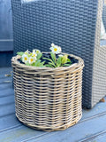 Set of 3 Straw Baskets
