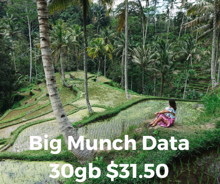 Big Munch Data ONLY SIM