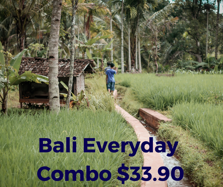 Bali Everyday Voice & Data Combo 10GB data