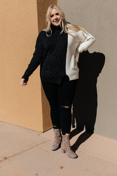 Mostly Dark Turtle Neck Sweater