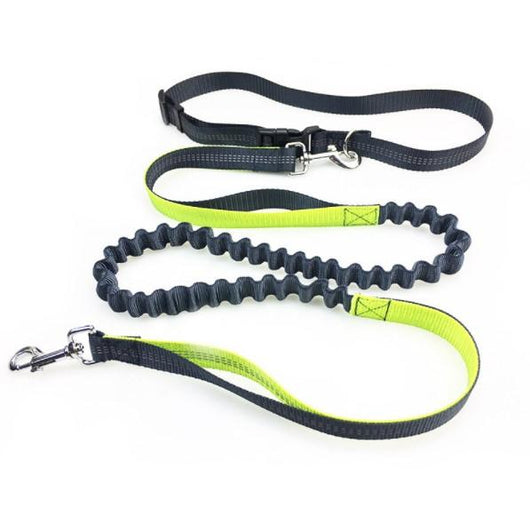 Hands Free Dog Running Leash - usefulitem