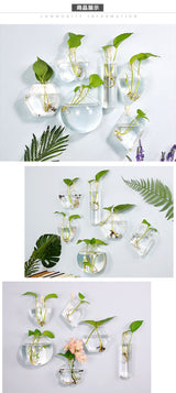 Handmade Hexagonal Wall Clear Terrarium Vase - usefulitem