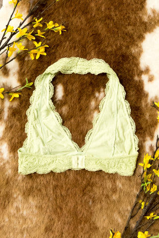 Lovely in Lace Bralette in Pastel Lime