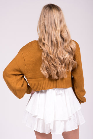 Dreamer's World Sweater in Camel
