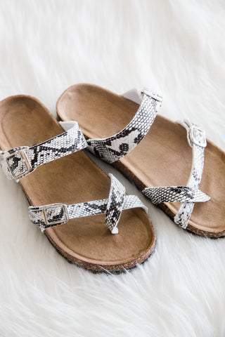 Adventure is Out There Sandals