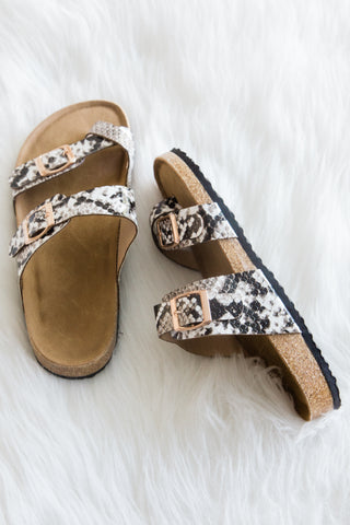 Let's Explore Sandals in Snake