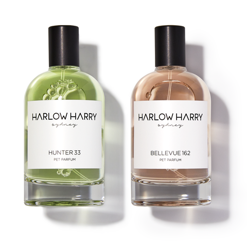 Harlow Harry dog safe perfume