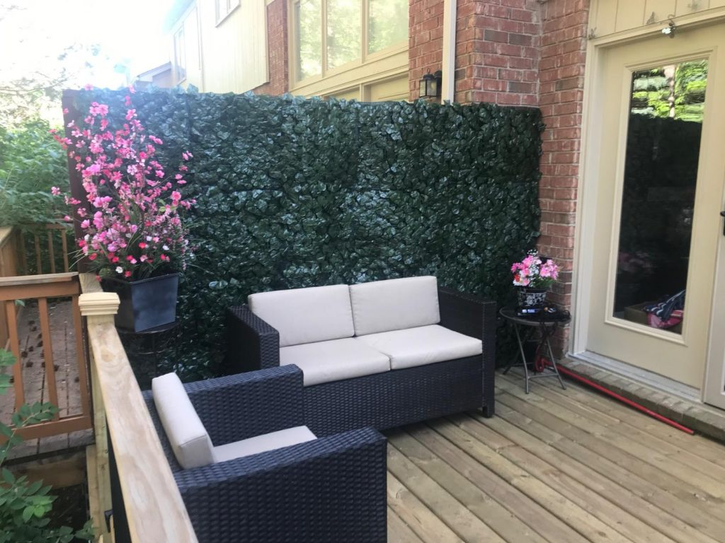 ivy-covered privacy screen for a patio