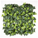 Multi-Layer Sweet Potato Leaves (12-Pack) - ColourTree