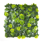 Birch Ivy Leaves (12-Pack) - ColourTree