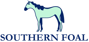 Southern Foal