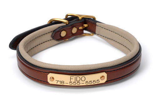 Padded Name Plate Dog Collar