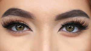Nichola - Medium Glam Band Lash