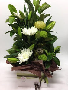 Boxed Arrangement Whites and Greens - Flowers of Phillip Island