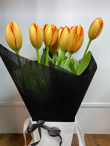 Bag of Fresh Tulips