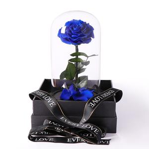 Preserved Glass Dome  Roses - Flowers of Phillip Island