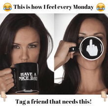 Load image into Gallery viewer, Have a nice day mug with middle finger in the bottom meme. How I feel every Monday mug. Tag a friend. Monday Mood.