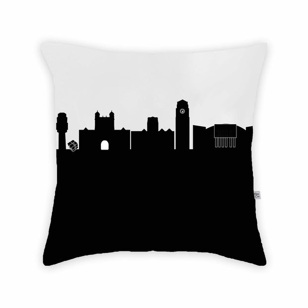 Ann Arbor MI Skyline Large Throw Pillow