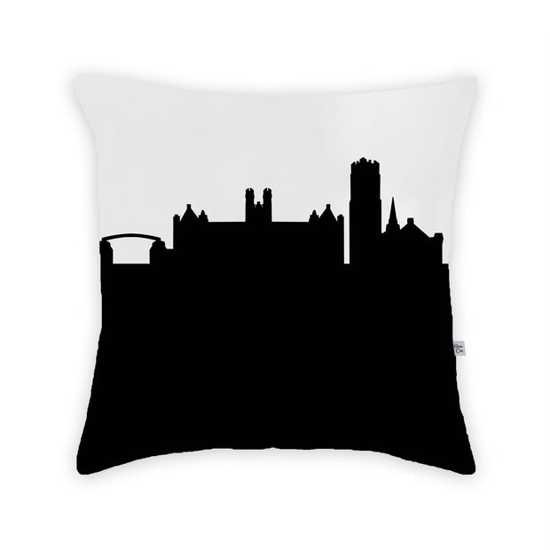Gainesville FL Skyline Large Throw Pillow