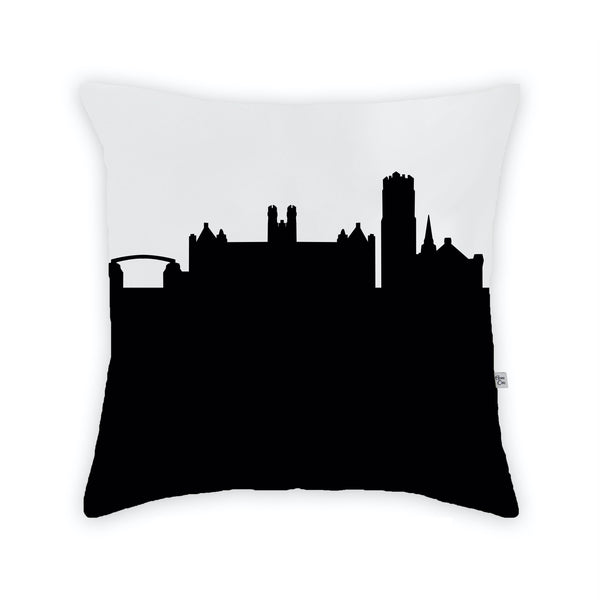 Gainesville (University of Florida) Large Throw Pillow by Anne Cate