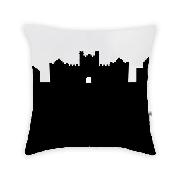 Wooster OH Skyline Large Throw Pillow
