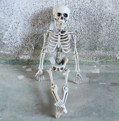 1Pcs Halloween Prop Human Skeleton Decor 38x12cm