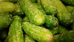 Salted Gherkins