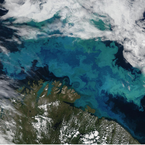 Climate change will shift the oceans' colors