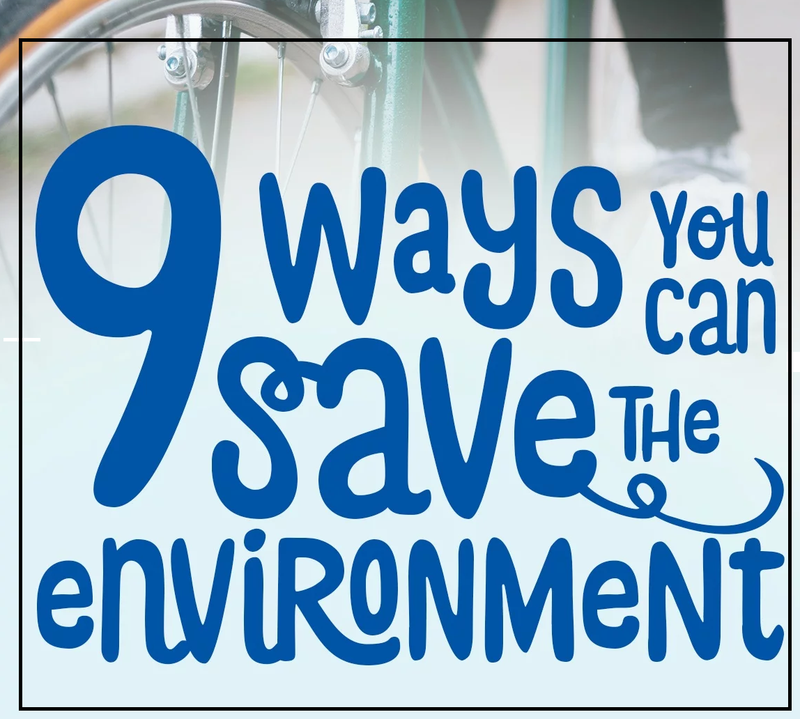 9 Things You Can Do to Save the Environment