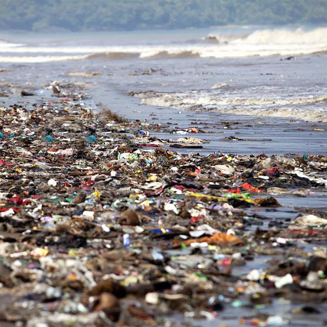 Plastic pollution in sea set to treble in a decade, warn government scientists