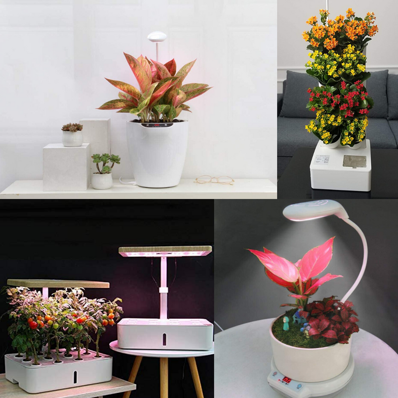 Smarty Garden (Indoor self watering planters)