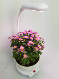 SmartyGarden - Mini Self Watering Planter with Led Lamp