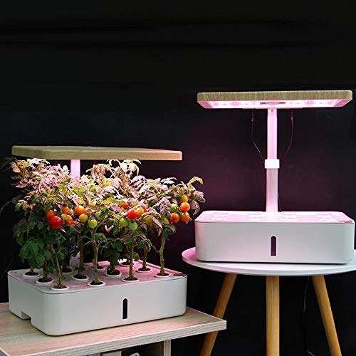 SmartyGarden Smart Self Watering Garden with Led Lamp