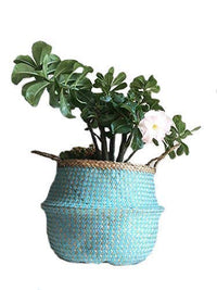 Blue Paper Seagrass Belly Basket (Handmade in Vietnam) Large, X-Large