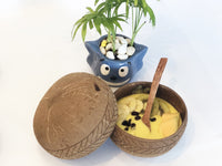 Cocoboo Organic Natural Jumbo Coconut Shell Bowl Gift Set 1 with Bamboo Straw Set