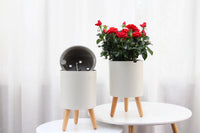 Smart Self Watering Pot with Sturdy Wooden Legs Stand, Round
