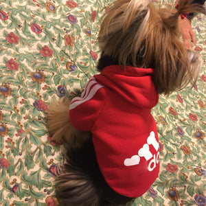 Adidog Hoodie for Dogs, Puppies