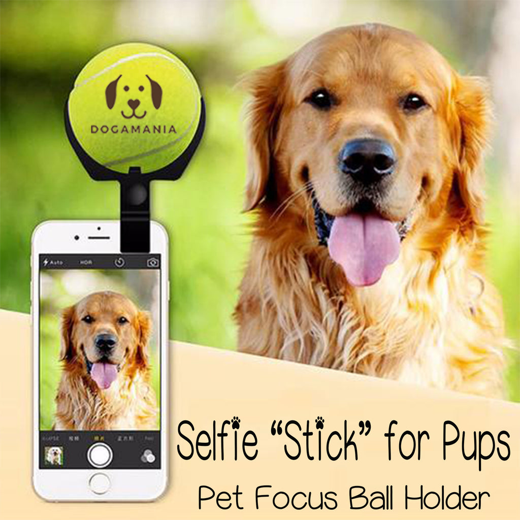 Dog Selfie Ball Phone Attachment