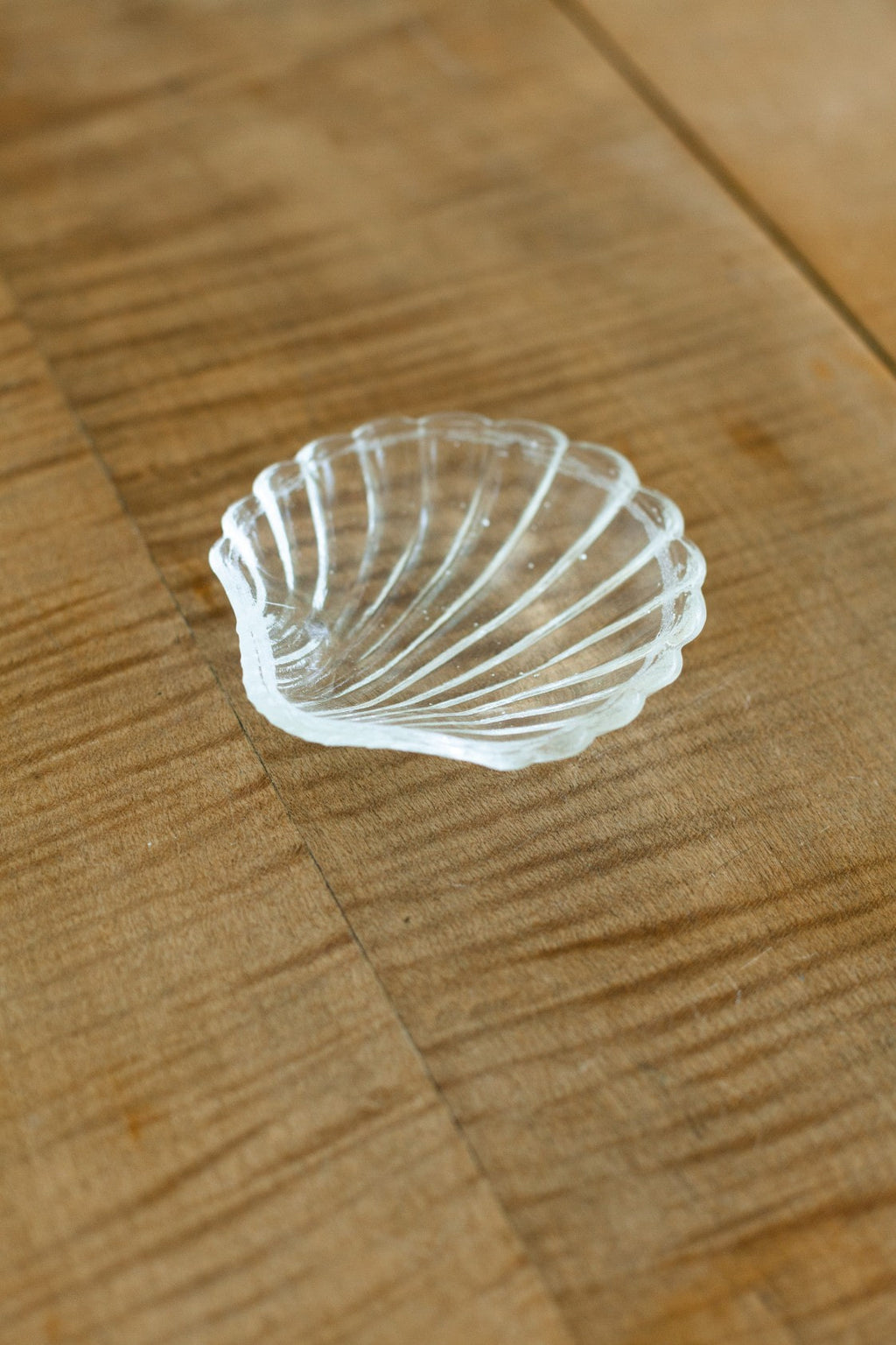 Glass Shell - Fallow Home.