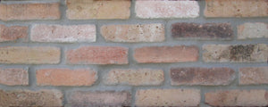 Dolphin Mixed color chicago brick tiles