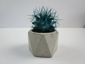 Unusual Living Room Ornament. Geometric Concrete Planter, Concrete Pot. Hand Made. FREE SHIPPING!
