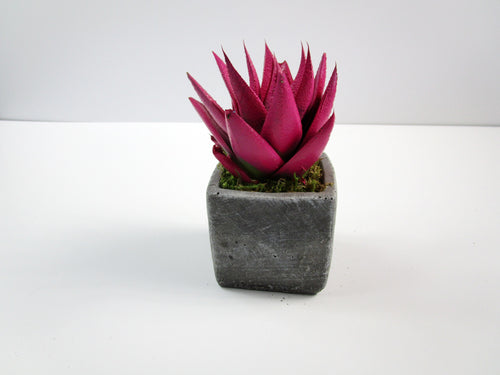 Kitchen Decor That Is Unique. Square Concrete Planter, Concrete Pot. Hand Made. Modern Home Decor. FREE SHIPPING!