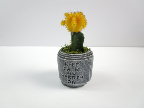 House Decoration Item For Interior Or Garden. Concrete Cylindrical Pot, Hand Made. FREE SHIPPING!