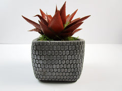 Perfect Home Decor. Square Concrete Planter, Concrete Pot Hand Made. Appartmant Decorating Made right. FREE SHIPPING!