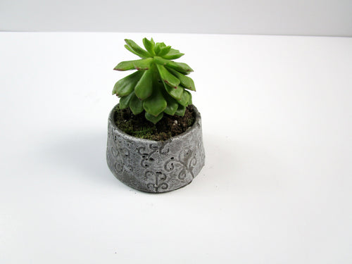 Concrete Cylindrical Pot, Hand Made decorative item for home accessory. FREE SHIPPING!