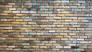 CHICAGO STYLE BRICK VENEERS- BEIGE COLOR. Thin Concrete Brick Veneers. Cheap brick Veneers. FREE SHIPPING!