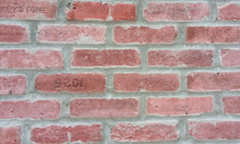 Sample of Flamingo Color Brick Veneers