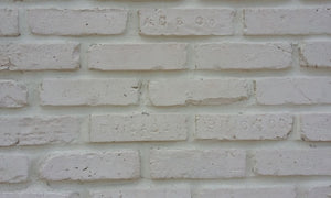 Sample of CHICAGO STYLE BRICK VENEERS- PURE WHITE COLOR
