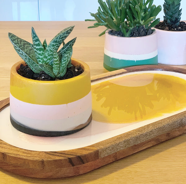Resin Pot & Serving Board Workshop - June