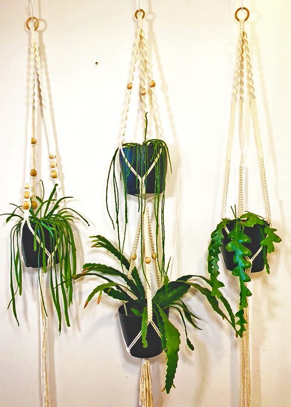 Luxe Macrame Plant Hanger Craft Kit & Digital Workshop